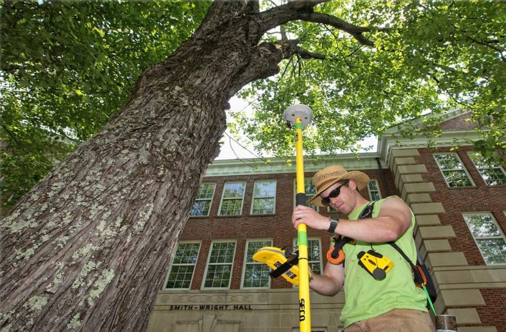 Arborist Consultations-Mesa Tree Trimming and Stump Grinding Services-We Offer Tree Trimming Services, Tree Removal, Tree Pruning, Tree Cutting, Residential and Commercial Tree Trimming Services, Storm Damage, Emergency Tree Removal, Land Clearing, Tree Companies, Tree Care Service, Stump Grinding, and we're the Best Tree Trimming Company Near You Guaranteed!