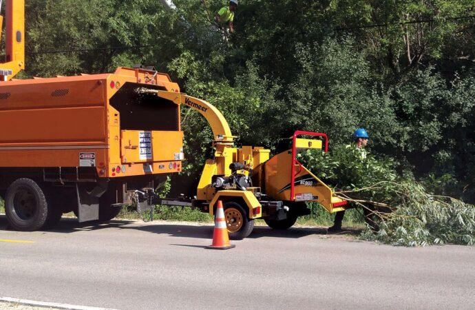 Commercial Tree Services-Mesa Tree Trimming and Stump Grinding Services-We Offer Tree Trimming Services, Tree Removal, Tree Pruning, Tree Cutting, Residential and Commercial Tree Trimming Services, Storm Damage, Emergency Tree Removal, Land Clearing, Tree Companies, Tree Care Service, Stump Grinding, and we're the Best Tree Trimming Company Near You Guaranteed!
