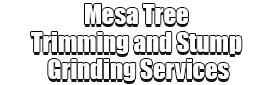 Mesa Tree Trimming and Stump Grinding Services Logo-We Offer Tree Trimming Services, Tree Removal, Tree Pruning, Tree Cutting, Residential and Commercial Tree Trimming Services, Storm Damage, Emergency Tree Removal, Land Clearing, Tree Companies, Tree Care Service, Stump Grinding, and we're the Best Tree Trimming Company Near You Guaranteed!