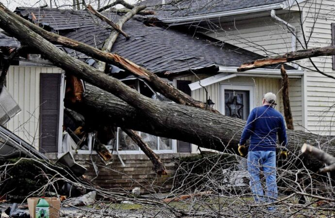 Storm Damage-Mesa Tree Trimming and Stump Grinding Services-We Offer Tree Trimming Services, Tree Removal, Tree Pruning, Tree Cutting, Residential and Commercial Tree Trimming Services, Storm Damage, Emergency Tree Removal, Land Clearing, Tree Companies, Tree Care Service, Stump Grinding, and we're the Best Tree Trimming Company Near You Guaranteed!